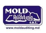 Mold Auditing